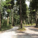 Rock creek campground okanogan