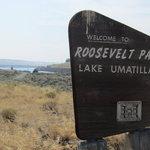 Roosevelt park