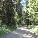Swift creek campground
