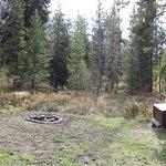 Box creek trailhead campground