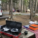 Canyon campground yellowstone np