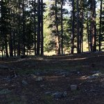 Doyle campground