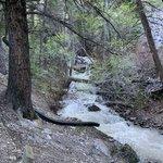 Five springs falls