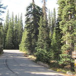 Lewis lake campground