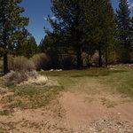 Buckeye creek