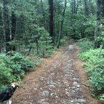 Massasoit state park
