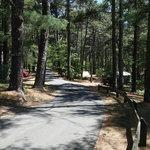 Barretts pond campground myles standish sf