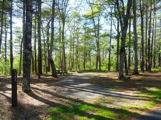 Nickerson State Park Reviews updated 2019