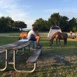 Bayside campground