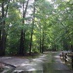 Greenbelt park campground