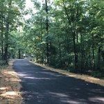 Little bennett regional park