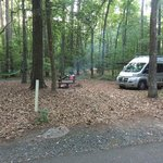 Shad landing campground pocomoke river sp