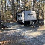 Shad landing campground pocomoke river sp