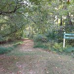 Smallwood state park