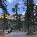 Fletcher view campground