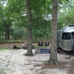 South shore campground bass river state forest