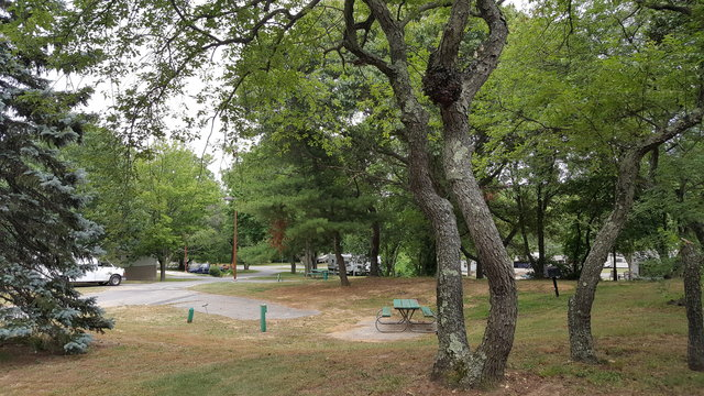 Battle Row Campground Reviews