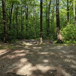 Blueberry patch campground