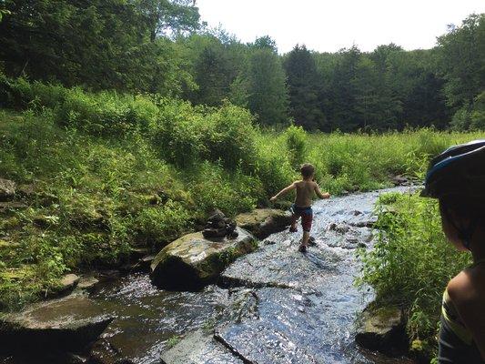 Little pond campground