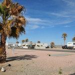 Desert palms golf rv resort