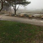 Fishermens memorial state park