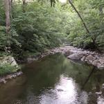North creek virginia