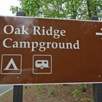 Oak ridge campground prince william forest
