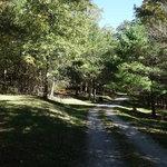 Raven cliff campground