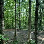 Rural retreat lake campground