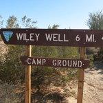 Wileys well ltva