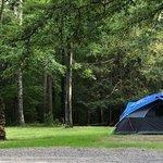 Walnut flats campground