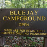Blue jay campground camp creek sp