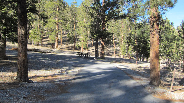 Mcwilliams Campground Reviews Updated 2019