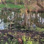 Chichaqua bottoms greenbelt
