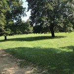 David bates memorial park