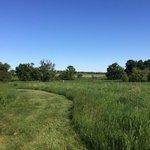 Morgan creek county park