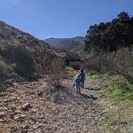 Thousand trails pio pico