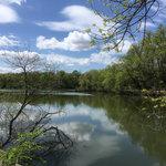 Wilson lake county park