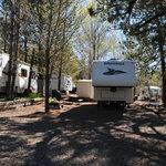 Pinezanita rv park campground