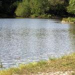 Turkey bayou campground