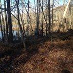 Delaney creek park