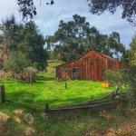 Dixon lake campground