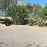Callville bay campground