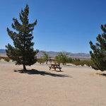 Joshua tree lake rv campground