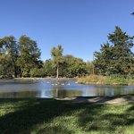Wolf pond park
