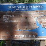 Blind sucker 2 campground