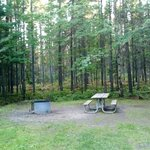 Carp river campground