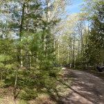 Cedar river north