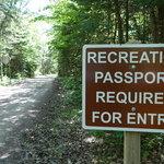 Detour campground