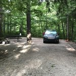D h day campground